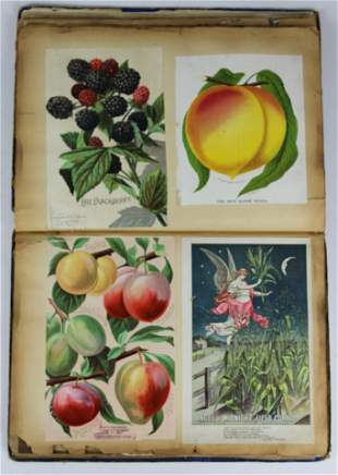 Trade Card album with seed company illustrations
