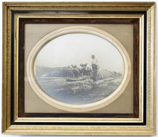Large 19th c Framed Photo of Sheep Farming