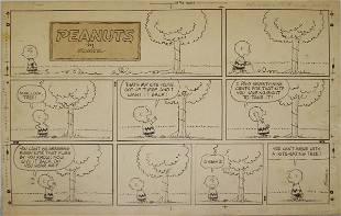 46: Peanuts Sunday Cartoon