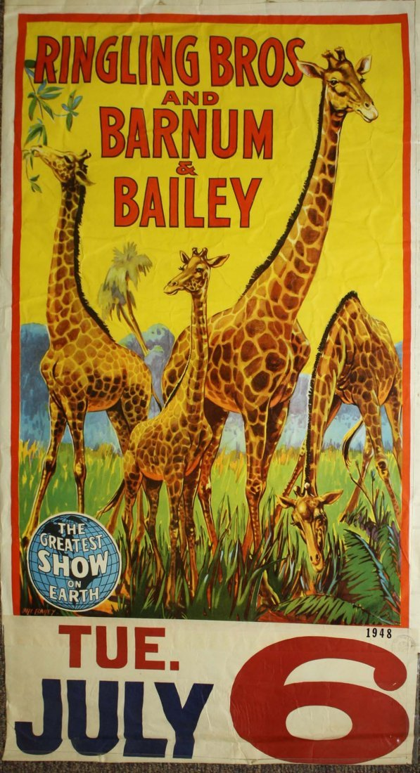 Ringling Bros. and Barnum & Bailey. Giraffes in the