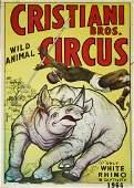 Cristiani Bros. Wild Animal Circus / Only White Rhino