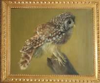 20th c American school Oc of barn owl signed Cleade 18