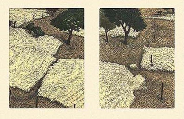 """Edward Herbeck  """"When and Then"""" Etching"""