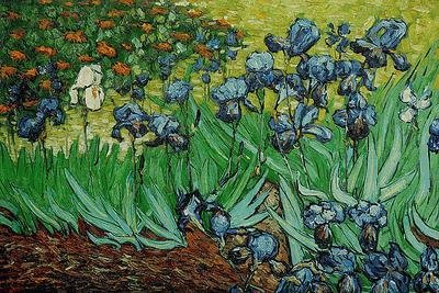 "19: Signed Limited Edition Oil ""Irises"" Van Gogh"