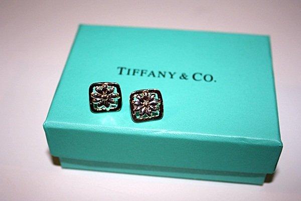 160X: Sterling silver Tiffany Flower Earrings