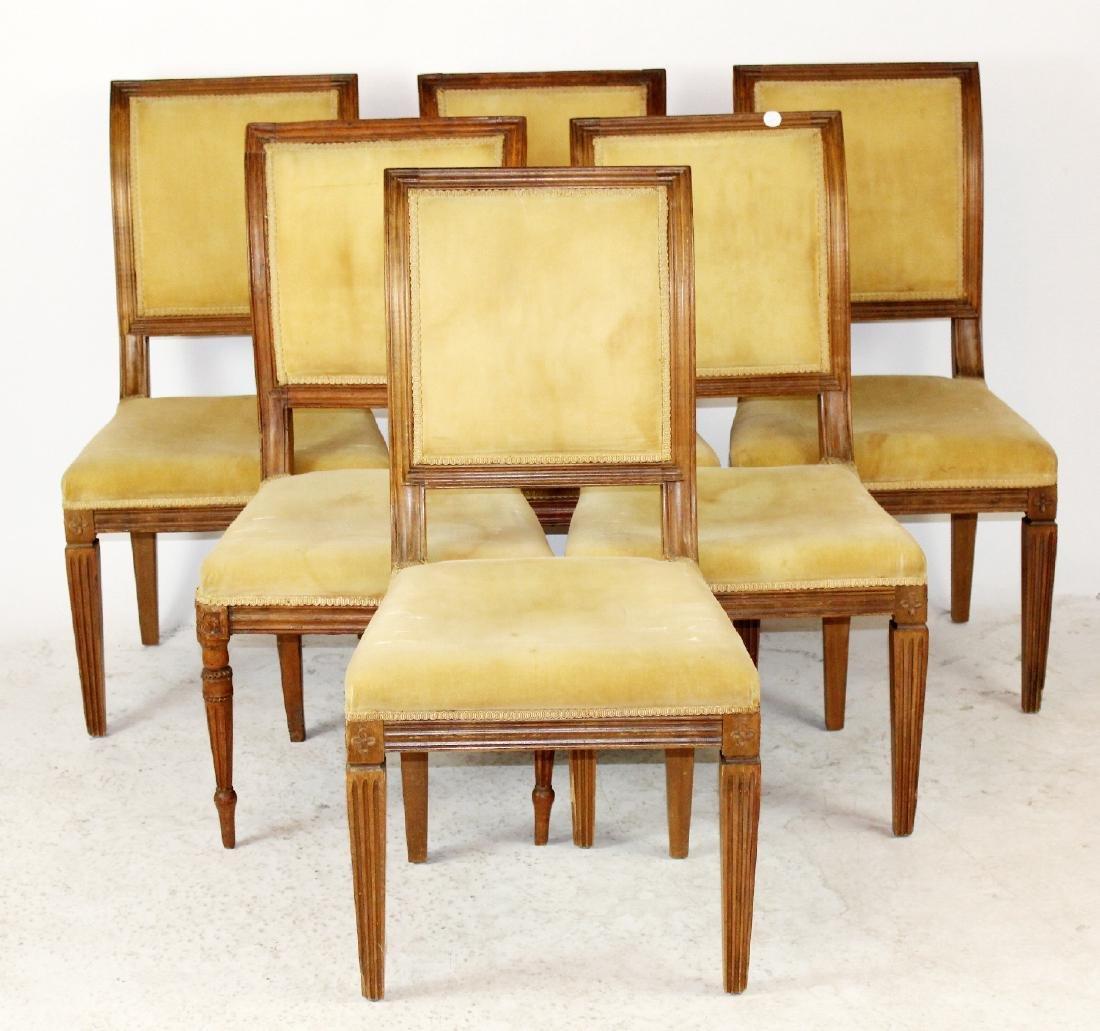 6 Louis XVI dining chairs - 3