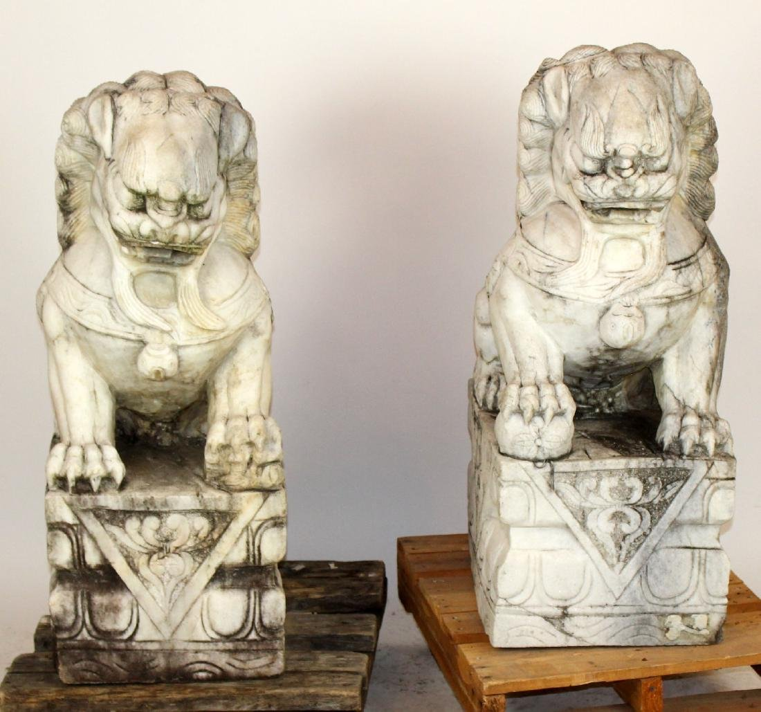 Pair Chinese carved marble foo lions
