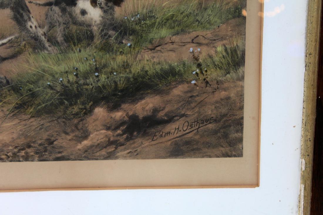Framed Antique print depicting hunting dogs - 2