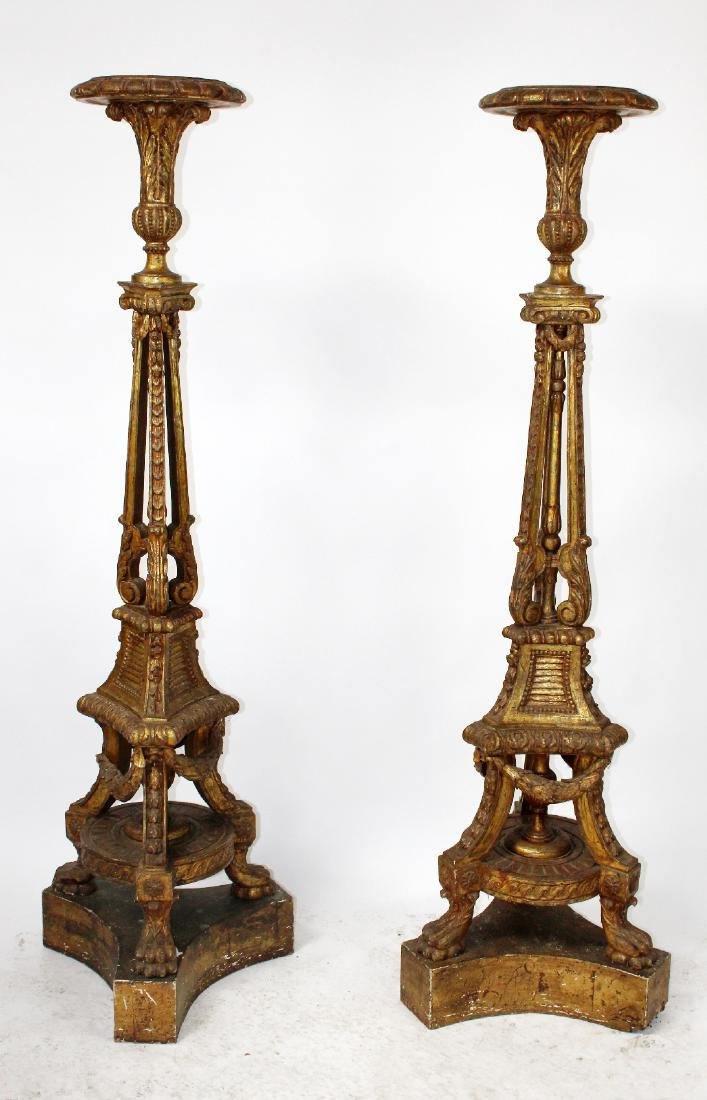 Pair of French Louis XVI giltwood plant stands