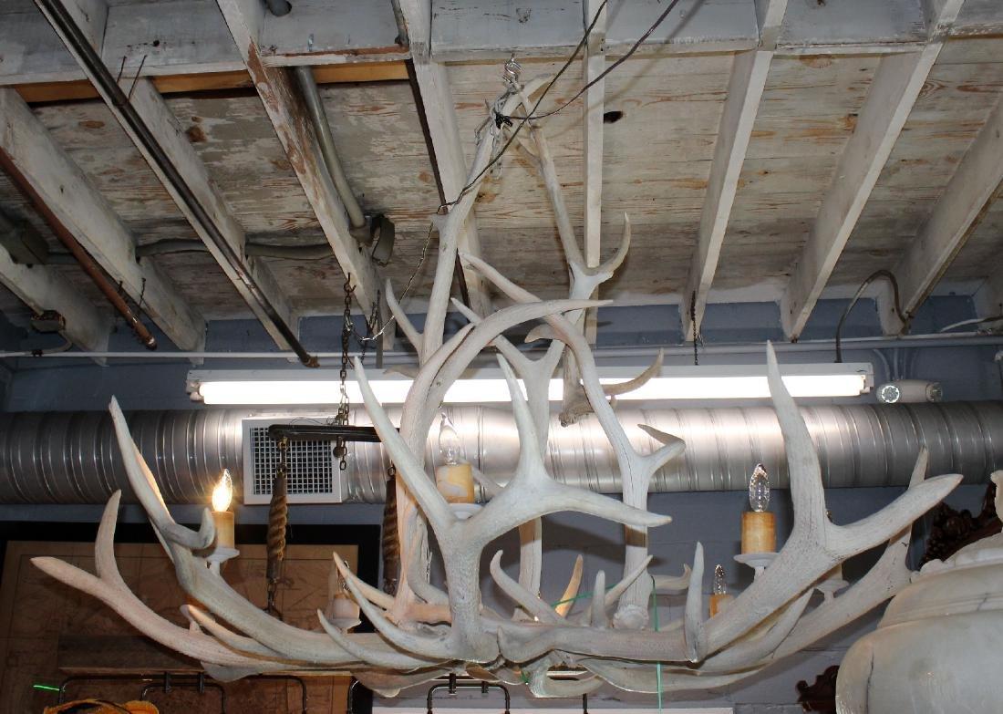 6 light elk antler chandelier