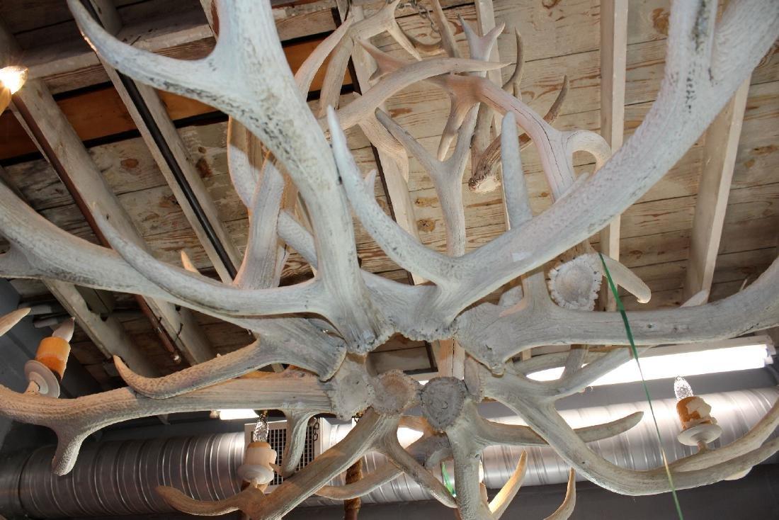 6 light elk antler chandelier - 2