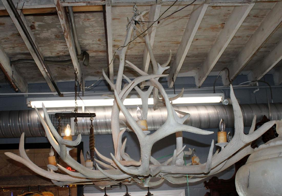 6 light elk antler chandelier - 3