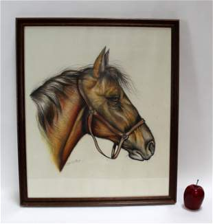 French colored pencil drawing of a horse