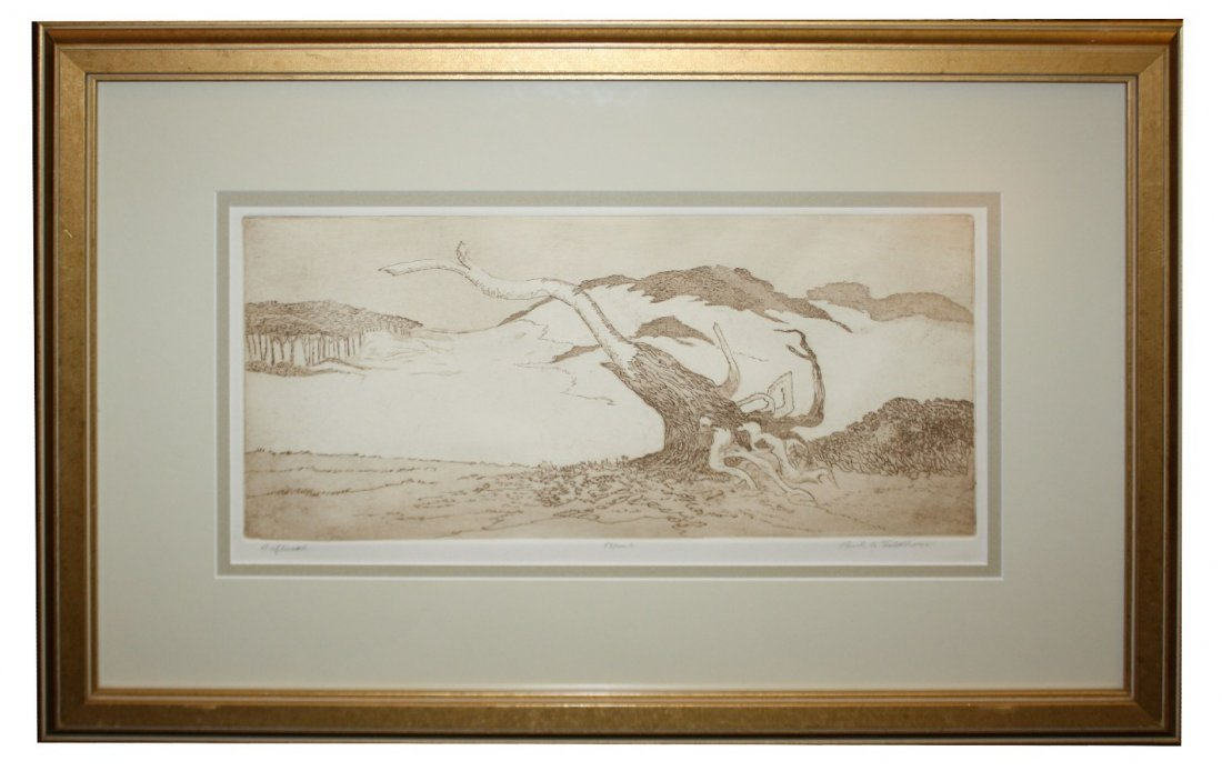 "6: Paul A. Feldhouse pen & ink under glass ""Driftwood"""