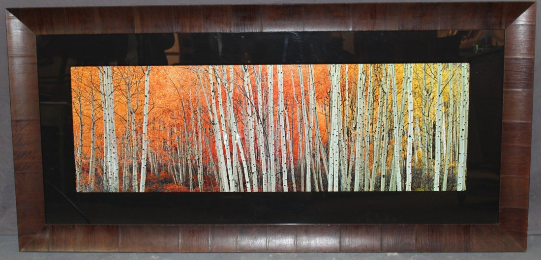 """Peter Lik signed numbered photograph """"Harmony"""" 401/950"""