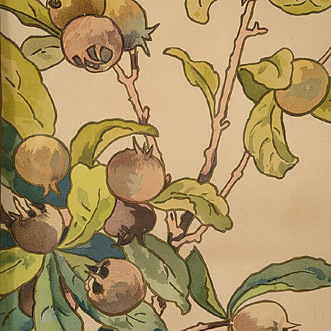 """MÉDAILLE (Late 19th century) """"Figs"""" and """"Guavas"""" - 2"""