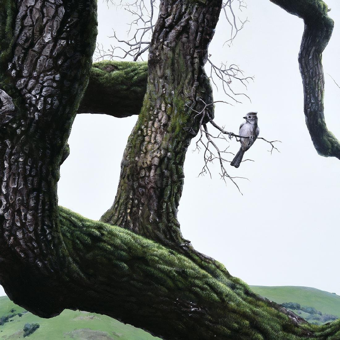 "Andrew Denman ""Quercus of Hawthorne"" acrylic on - 2"