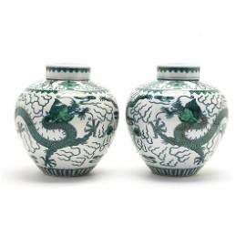 A pair of Chinese Doucai Porcelain Dragon Jars and