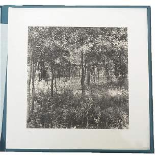 Portfolio, Ten Women, Ten Prints, Various Artists