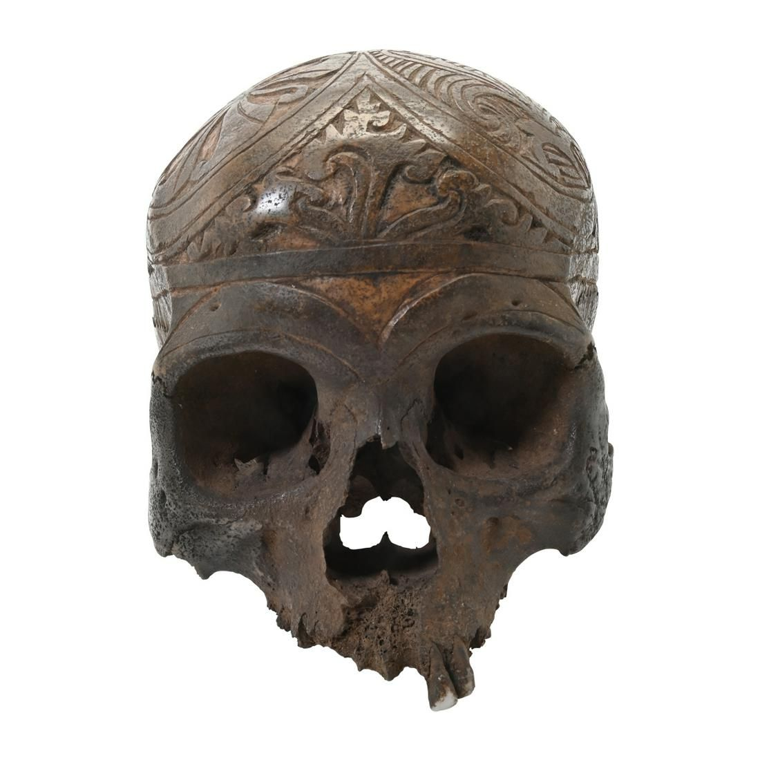Dayak Skull Head Hunters Human Trophy.