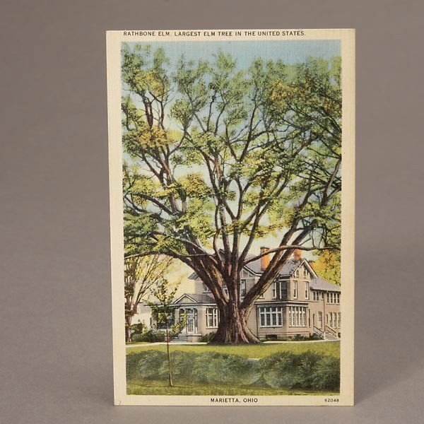 1045: Colection of Over 400 Postcards. - 3