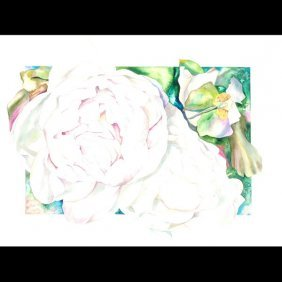 "Sally Robertson ""White Peony"" Watercolor"