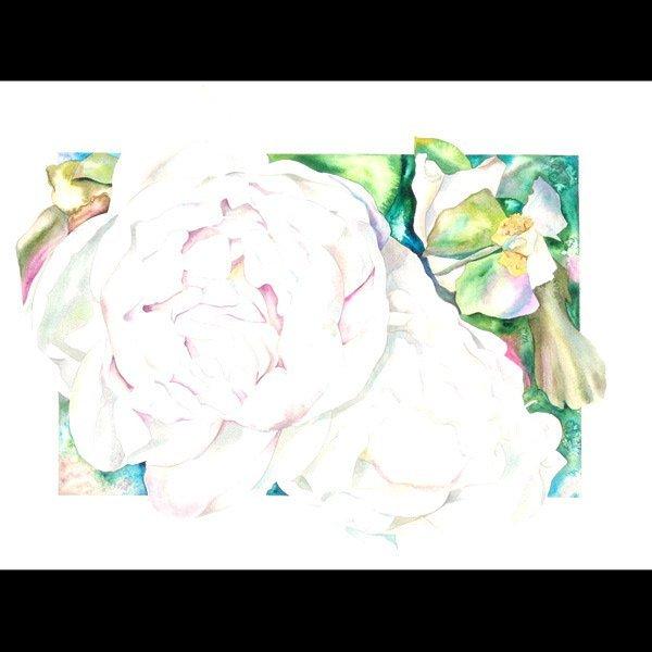 "1113: Sally Robertson ""White Peony"" Watercolor"