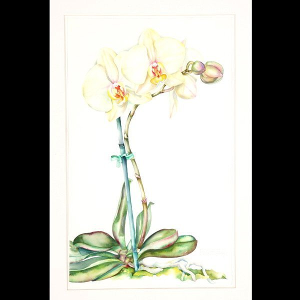 """1115: Sally Robertson """"White Orchid"""" Watercolor"""