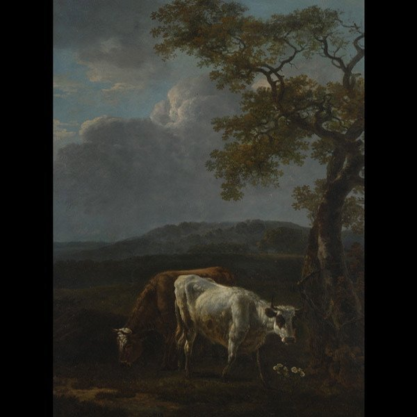 "019: After PAULUS POTTER   ""Cattle with Daisies"""