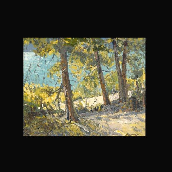 """10: PETER EWART   """"Pavilion Lake, British Columbia"""""""