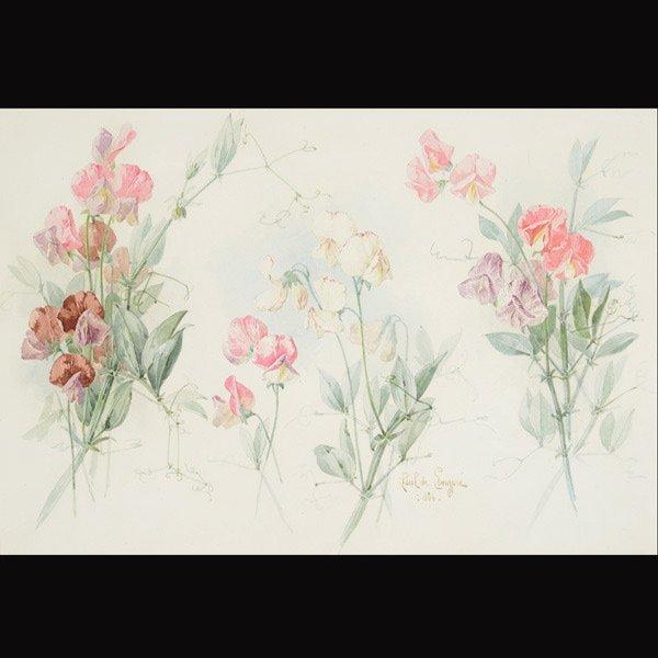 "14: PAUL DE LONGPRE ""Snap Dragons"" Watercolor"