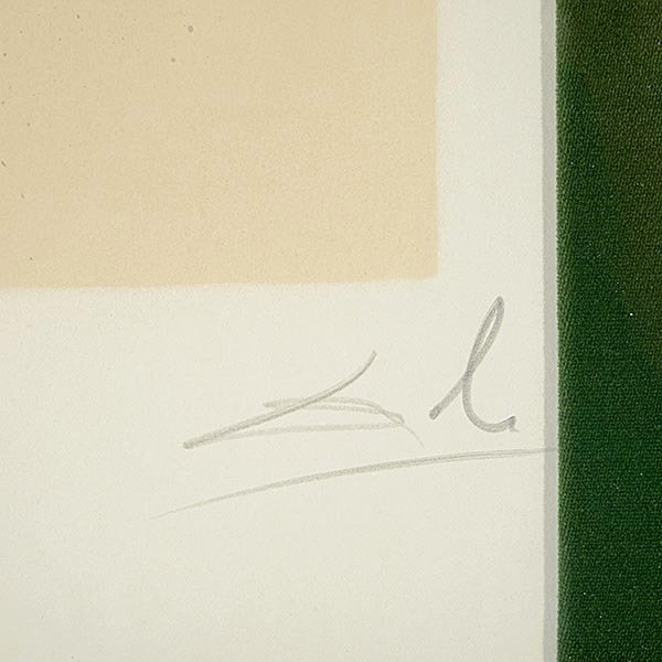 Salvador Dali, Aliyah, 11 lithographs each Signed - 2