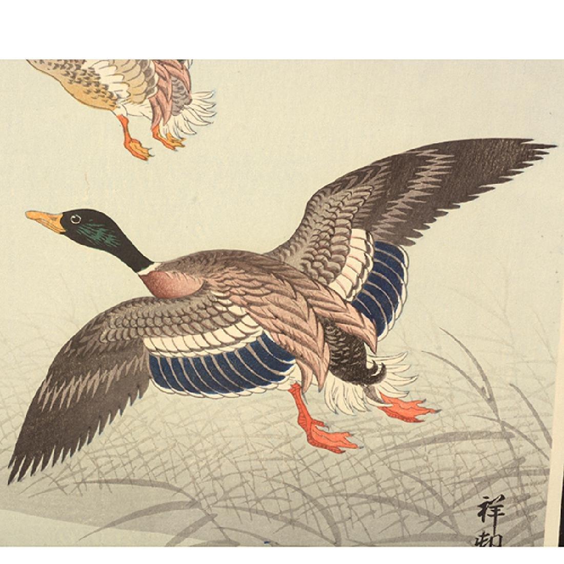 Koson Ohara (1877-1945): Two Woodblock Prints - 8