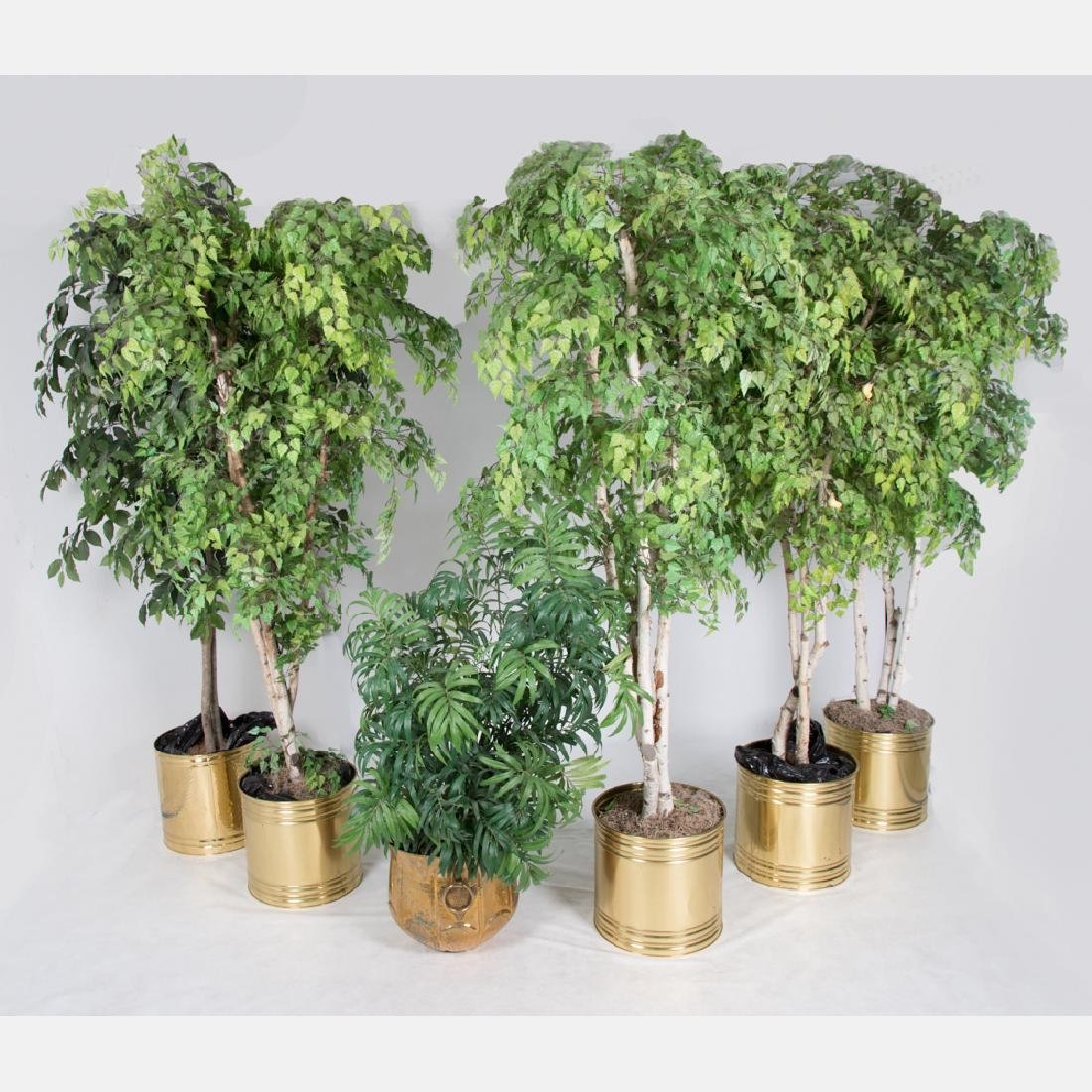 A Collection of Six Artificial Trees and Plants in