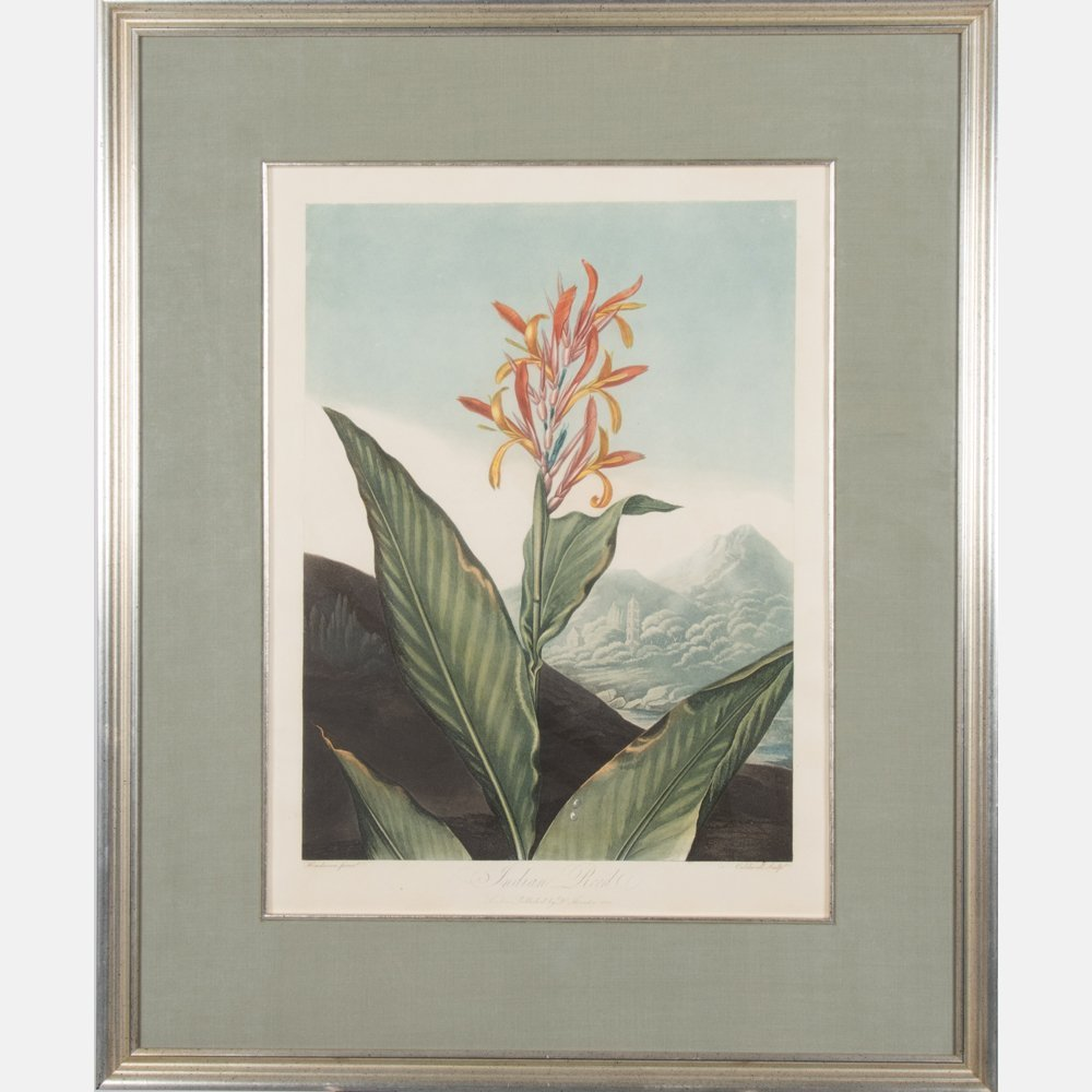 A Group of Three Botanical Colored Lithographs - 2
