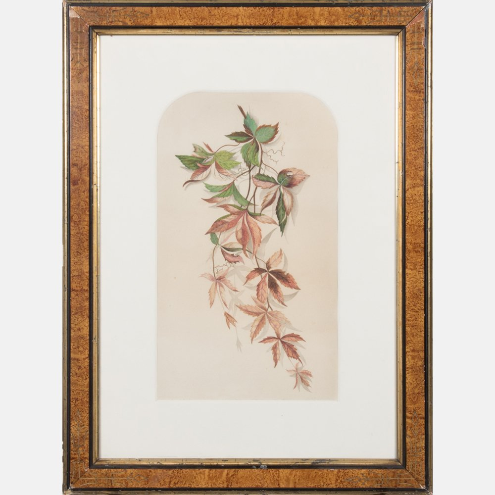 A Group of Three Botanical Colored Lithographs - 6