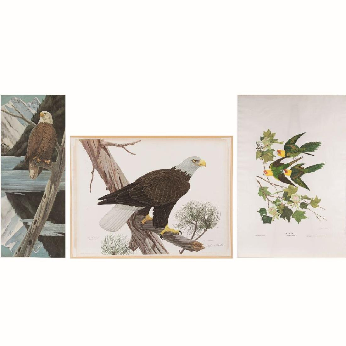John Aldrich Ruthven (b. 1924) 'Bald Eagle', 'Carolina