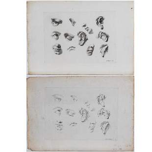 Two Etchings of Facial Features by Various Artists