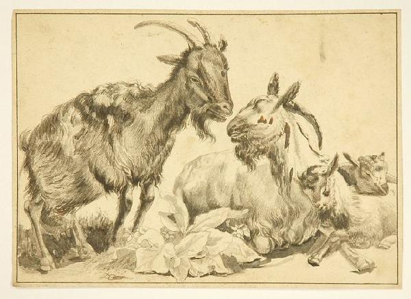 24: Jean-Jaques De Boissieu (1736-1810) Study of Goats,
