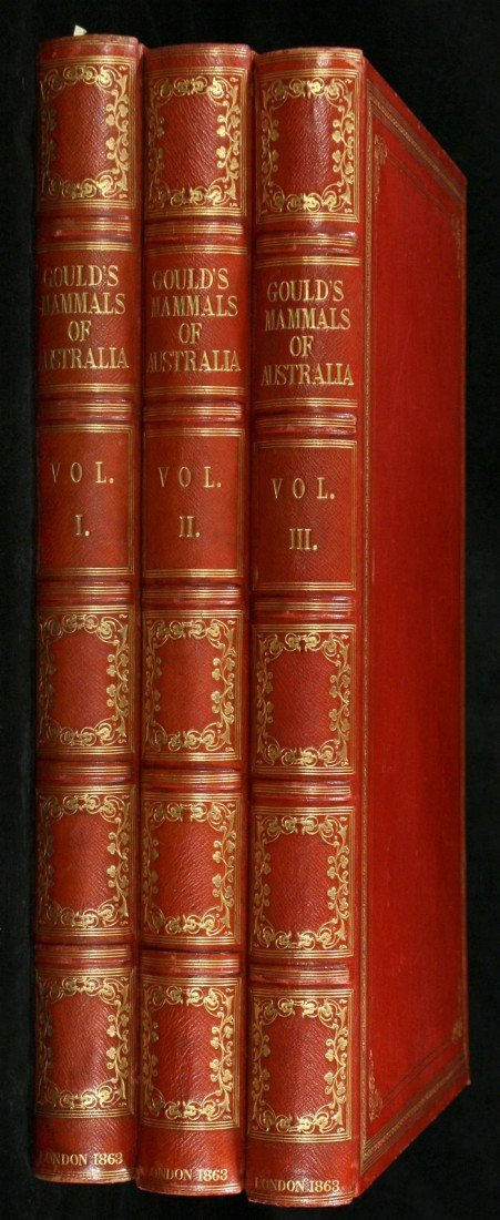 99: GOULD, John (1804-1881). The Mammals of Australia.