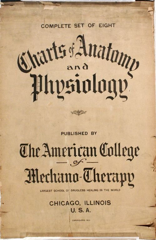 102: A Vintage Anatomical Chart by the Amercian College