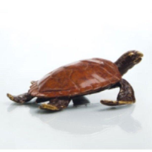 9: Alex The Turtle