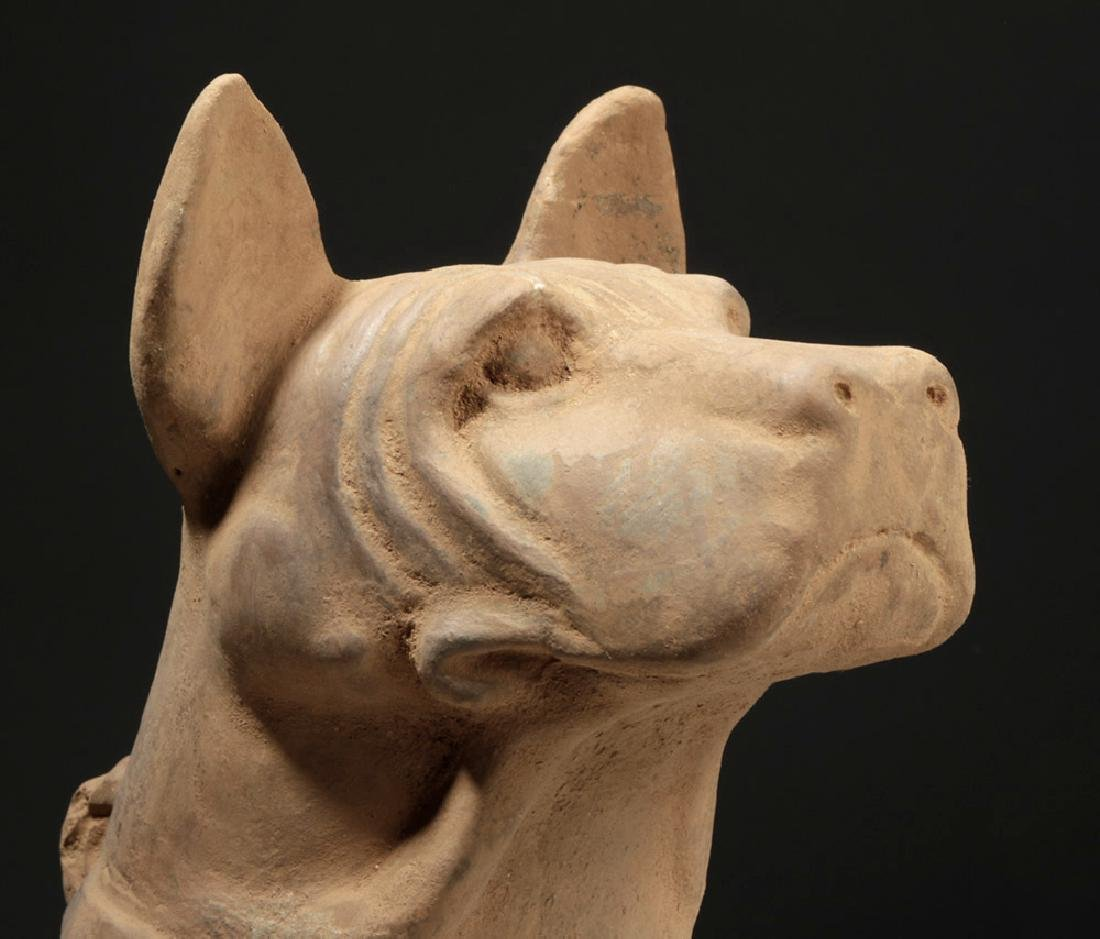Large Chinese Han Dynasty Pottery Dog - 5