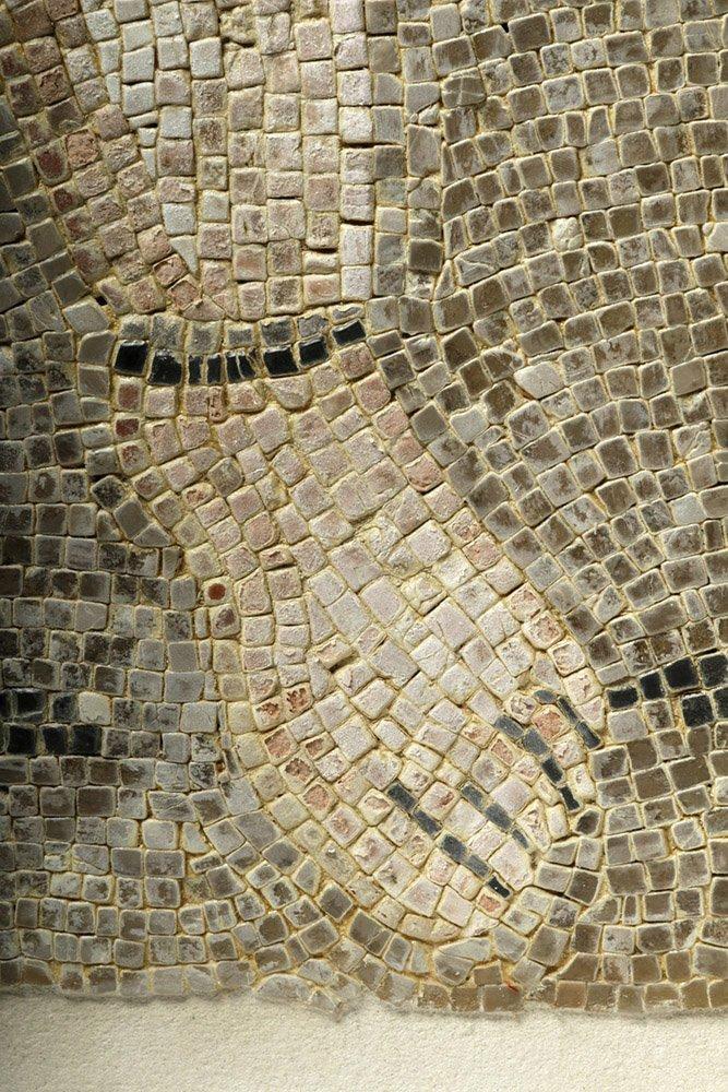 Roman Polychrome Mosaic - Bathhouse Scene - 5
