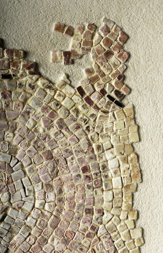 Roman Polychrome Mosaic - Bathhouse Scene - 7