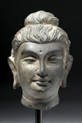 Sensitive Gandharan Gray Schist Head of Buddha