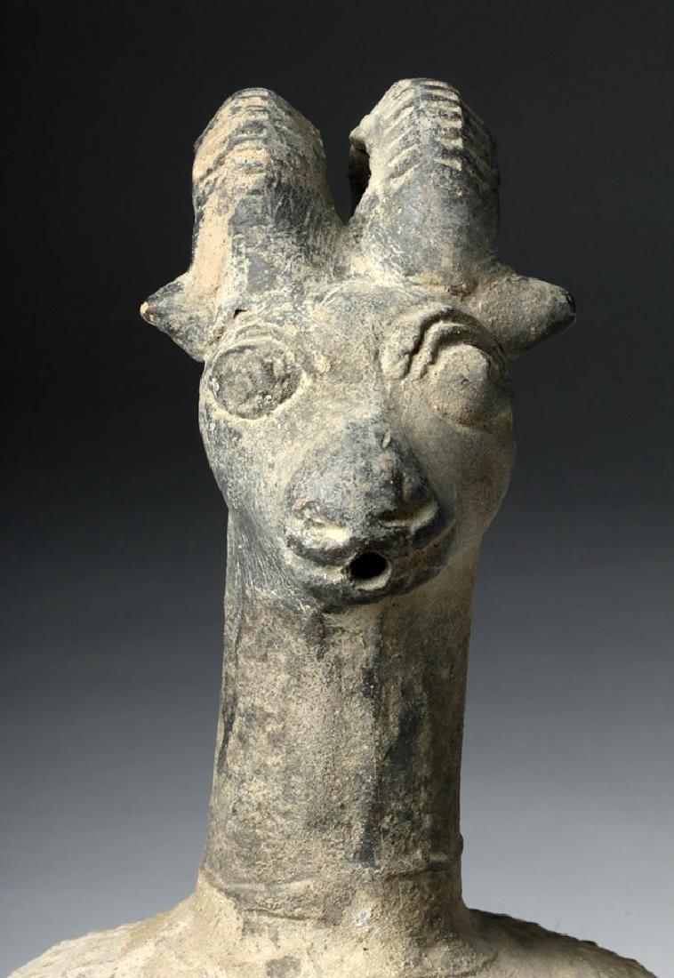 Islamic Pottery Ewer with Ibex Head - 5