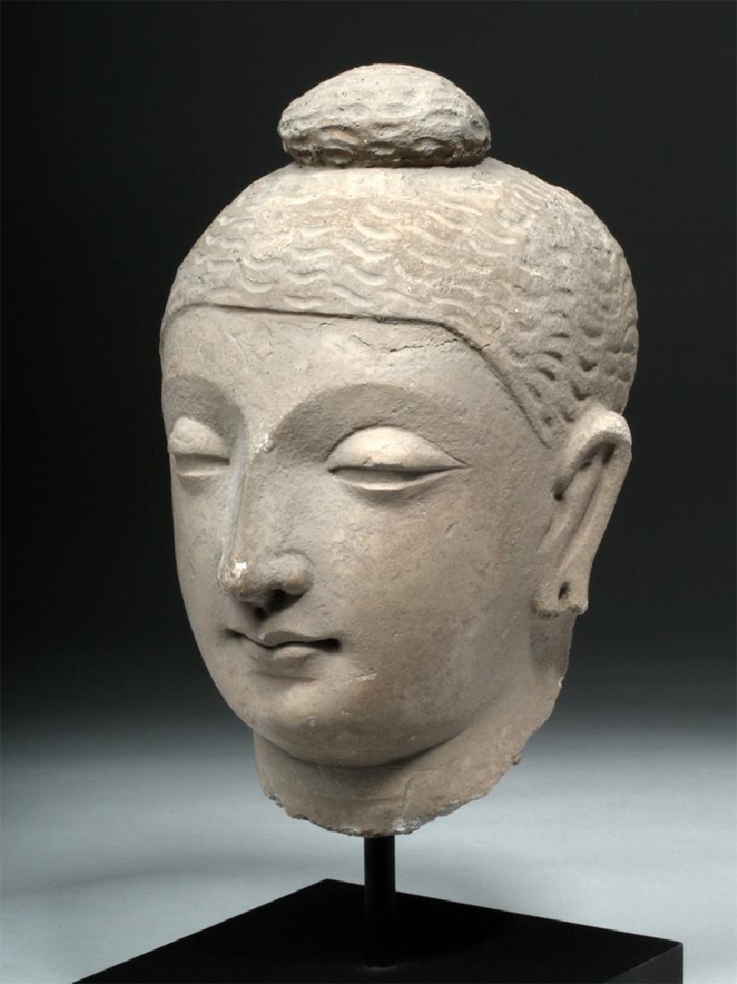 Superb Gandharan Stuccoed Schist Buddha Head
