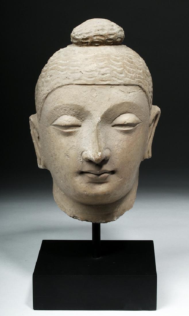 Superb Gandharan Stuccoed Schist Buddha Head - 2