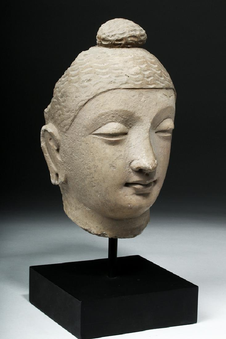 Superb Gandharan Stuccoed Schist Buddha Head - 5